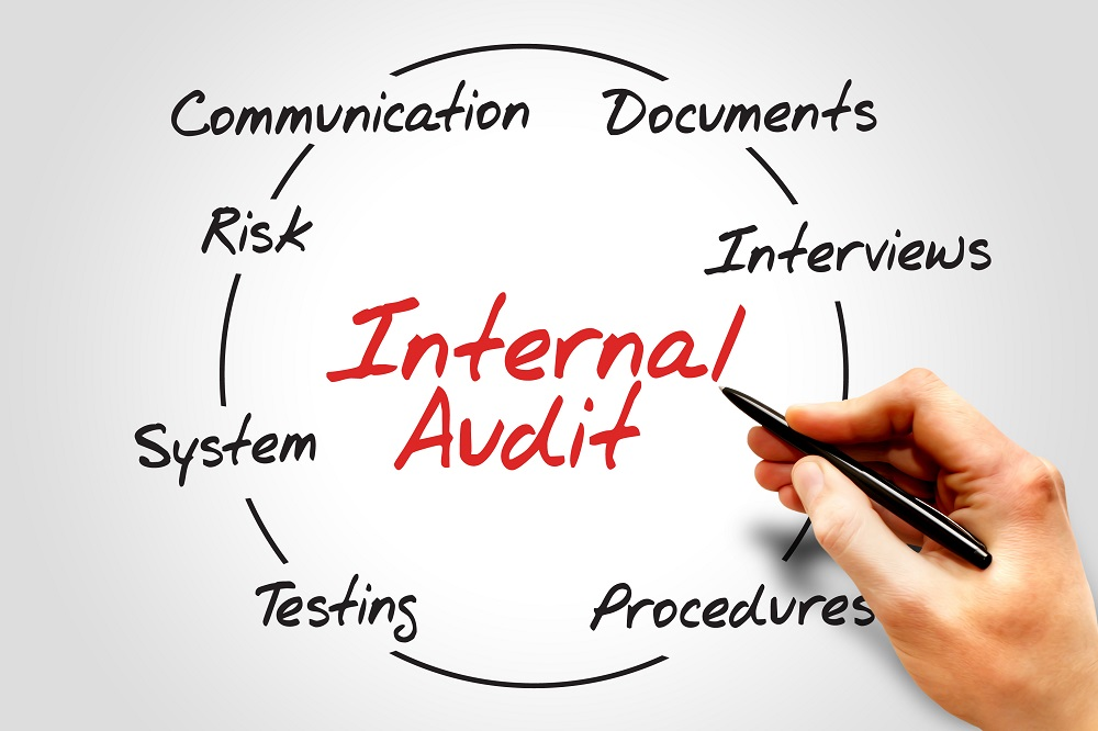 interne audit